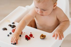 Baby led weaning recipes your whole family will enjoy