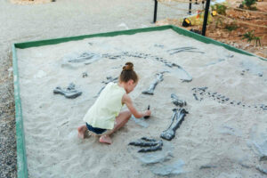 Can I go on a dinosaur dig with kids?