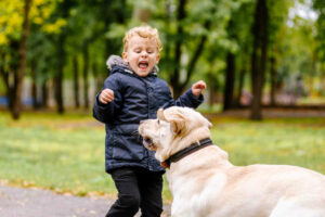 How to protect your kids from dog bites