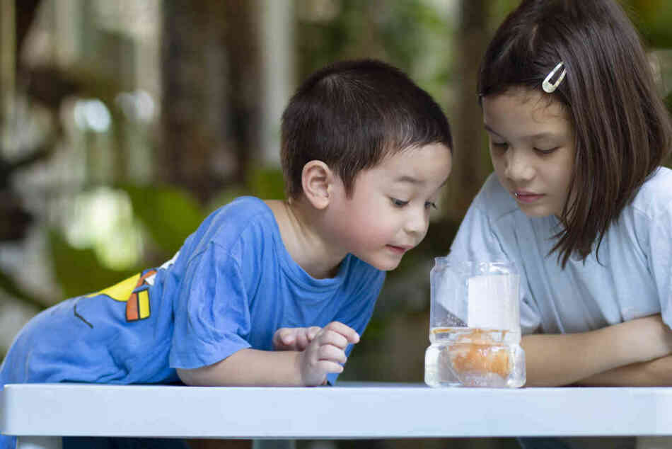 preschoolers doing science experiment at home